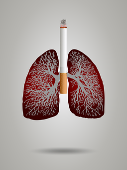 Cigarette and lungs